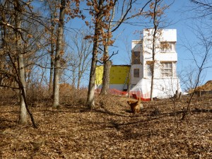 Passive House in the Woods from the woods